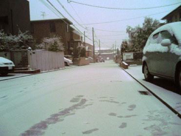 北九州市内は朝から積雪