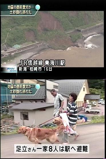 NA:震度6強の地震とともに、山の斜面が崩れ線路を覆った。愛犬のおかげて一家は、直前に避難し一命を取り留めた。(フジテレビの画面キャプチャ)