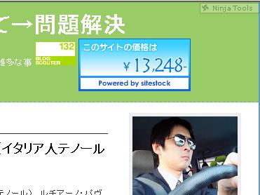 このブログの現在の価格は13,248円だそうな。