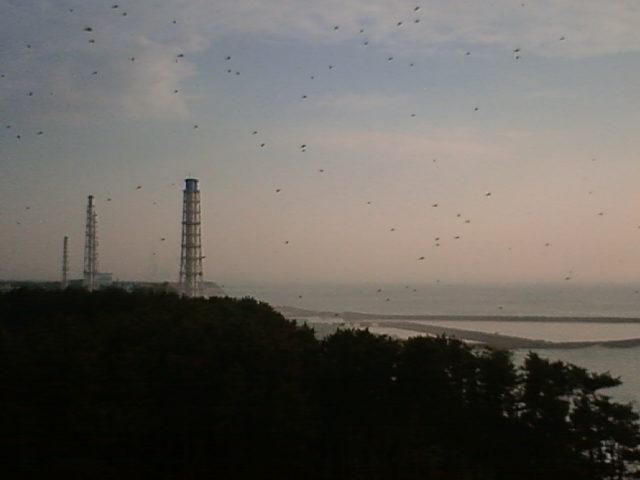 ふくいちライブカメラに無数の黒点(2011.05.25(水)06:00:11)